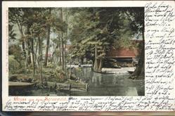 aw10999-Spreewald-Kat-Luebbenau