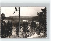 61753366 Wangershausen Partie im Wald Partie im Wald Keine Postkarte (siehe scan)