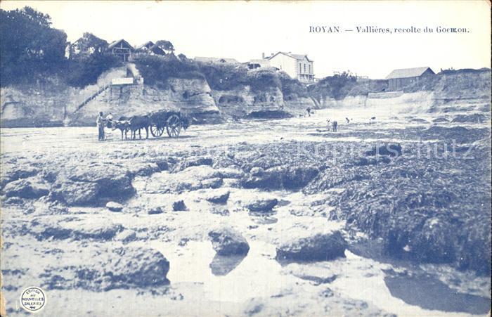 12546011 Royan Charente-Maritime Vallieres recolte du Goemon Poitiers-Charentes - Deutschland - Rücknahmen akzeptiert - Deutschland