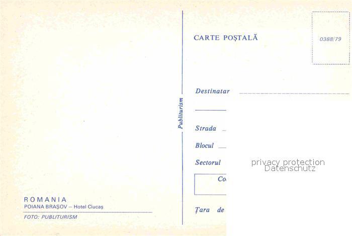 kc19608_b.jpg